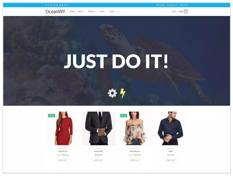 Small Business Website Theme: OceanWP