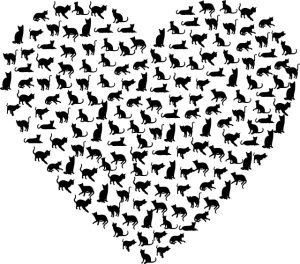 heart-cats-and-kittens-300x264